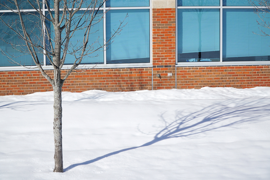 Don't Let Snow Slow Down Your Business Operation